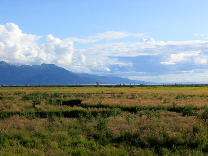 Potter's Marsh, Anchorage, AK - August 2014